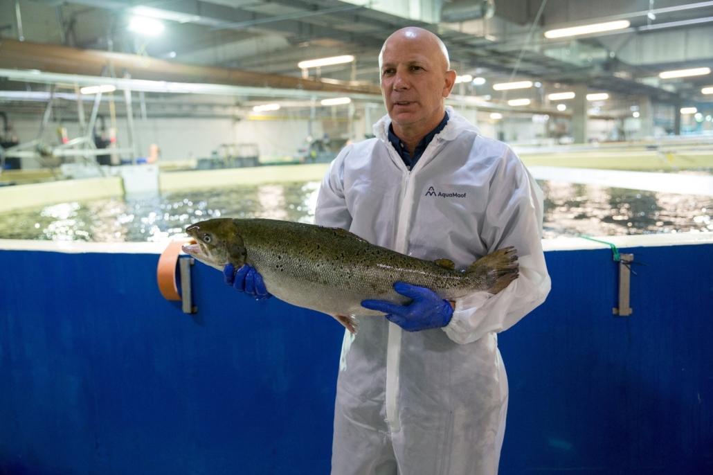 Smart Salmon - sustainability