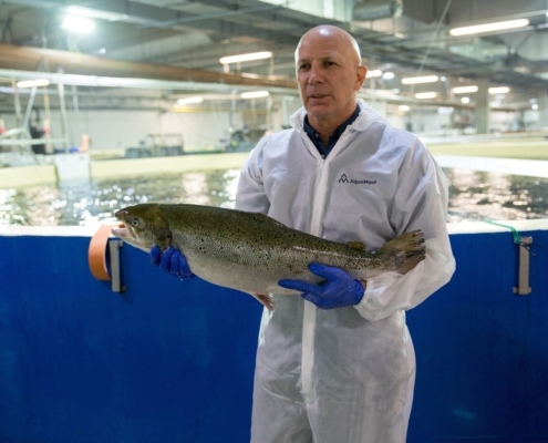 Smart Salmon - technology