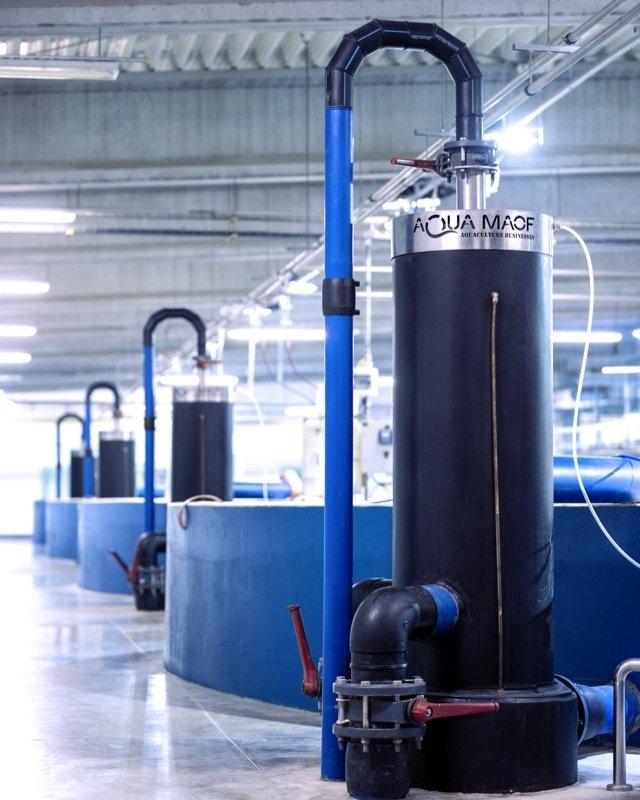 Smart Salmon - technology - AM pump