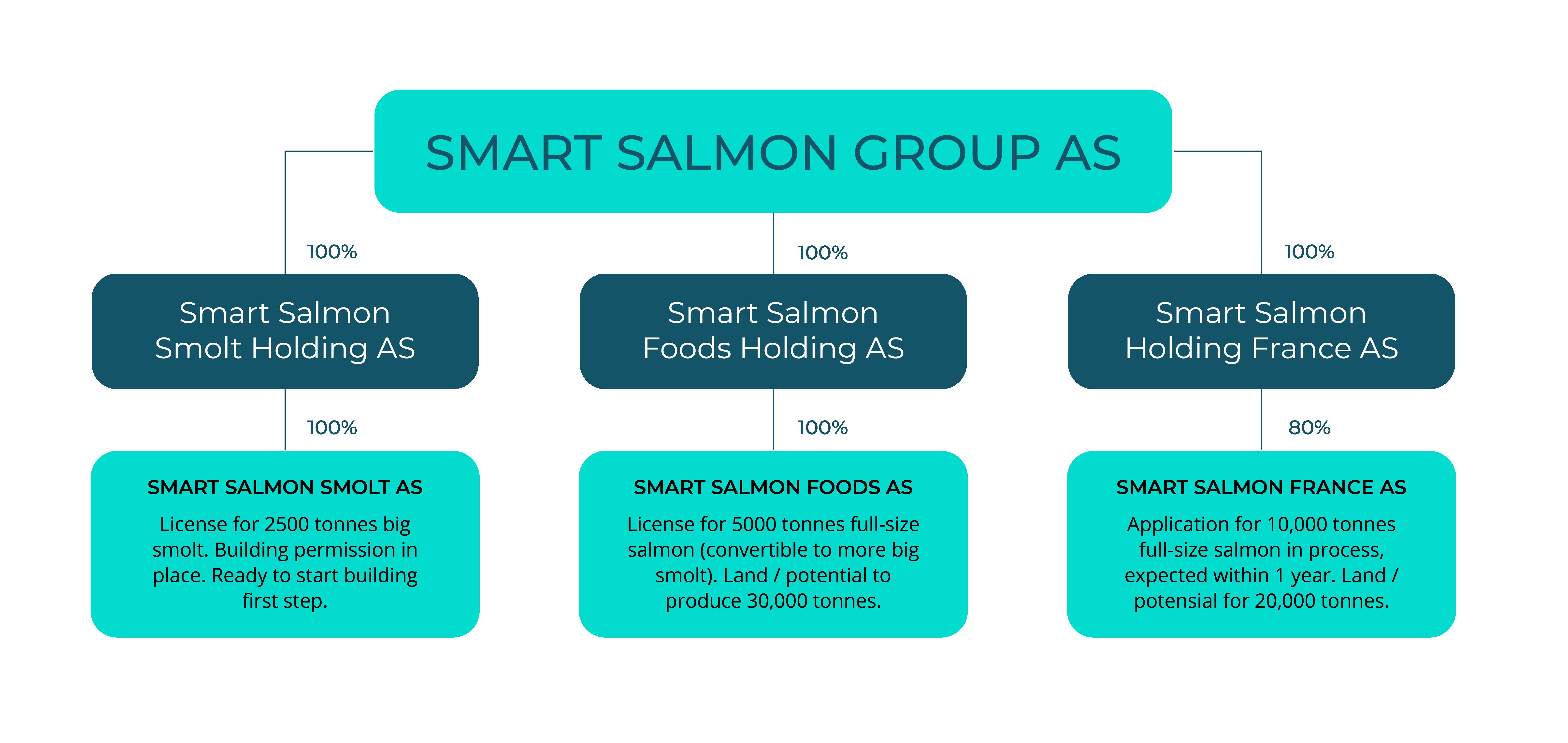 Smart Salmon Org Chart - smartsalmon.no